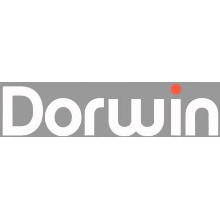 Dorwin